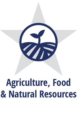 Logo for Texas CTE Agriculture, Food and Natural Resources