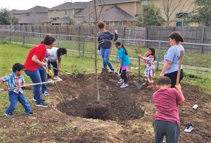 students planting tree at casey elementary