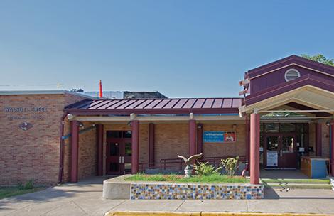 Walnut Creek Elementary School Austin Isd